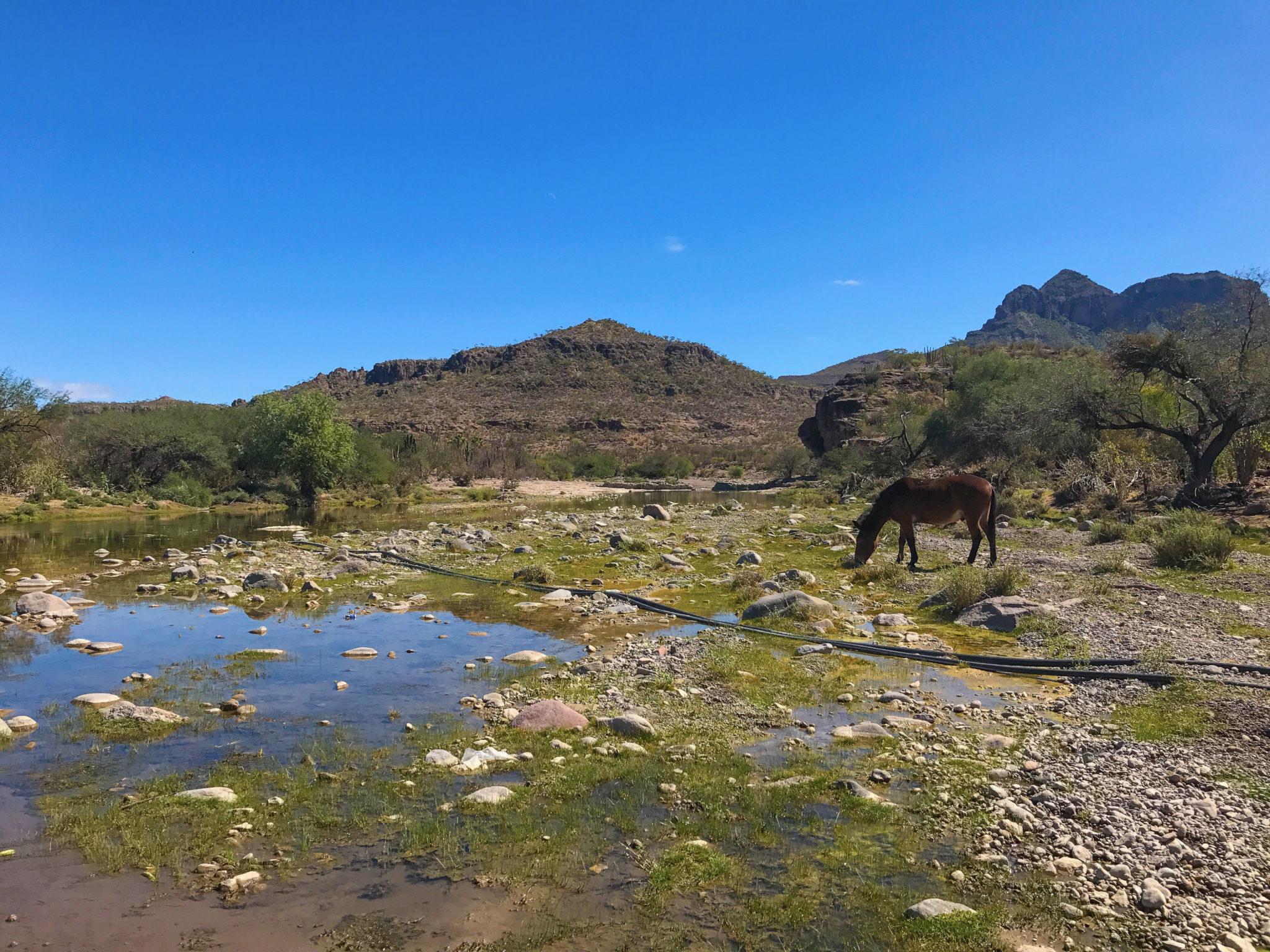 Santa Rita, Mexique