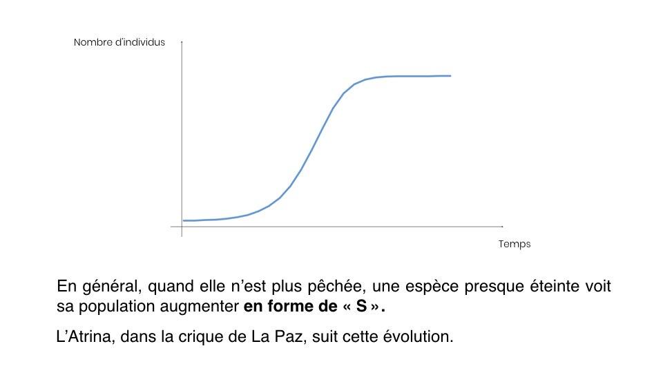 Diapo Prevision FR.002