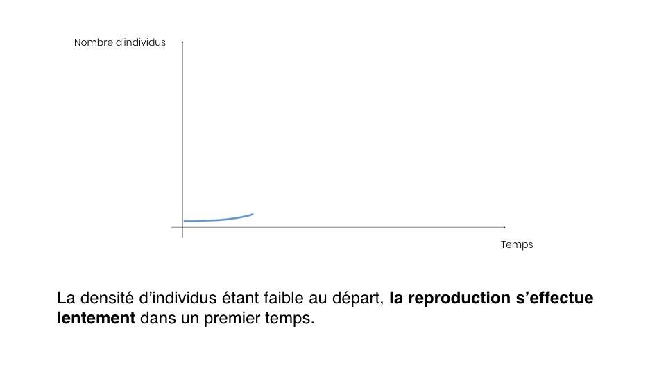 Diapo Prevision FR.003