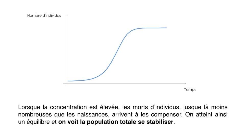 Diapo Prevision FR.005