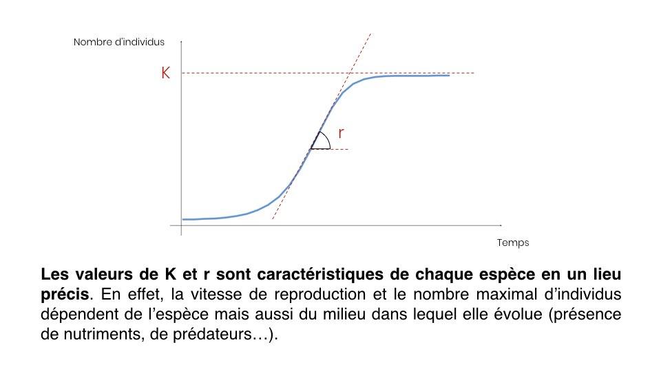 Diapo Prevision FR.008