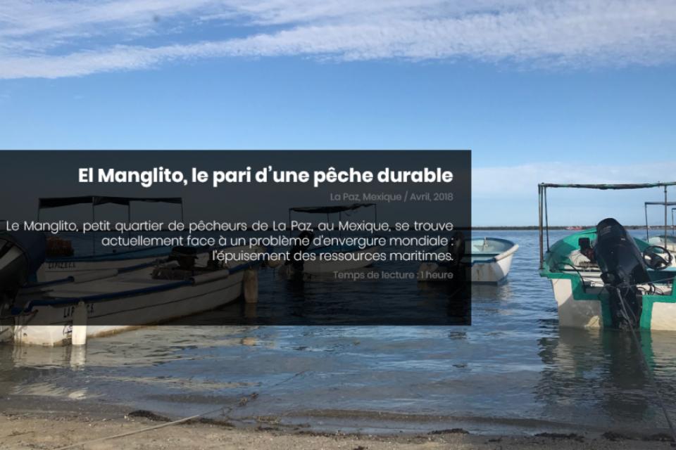 1_El Manglito FR