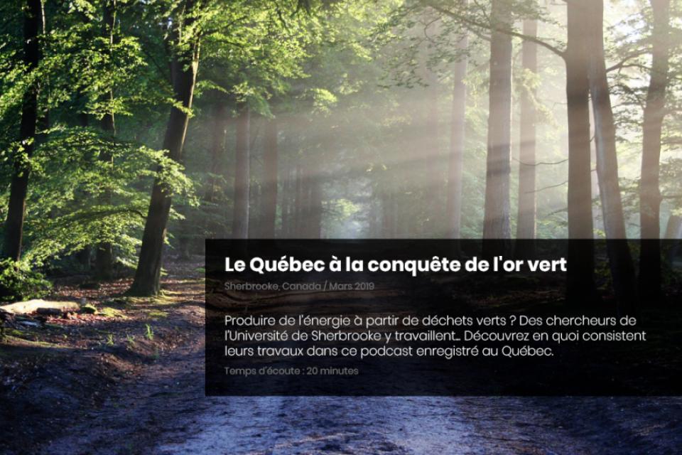 Le Québec à la conquête de l'or vert