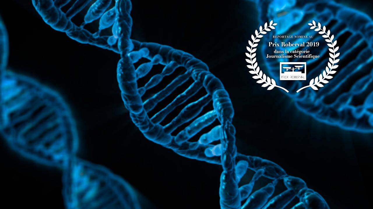 ADN_Prix